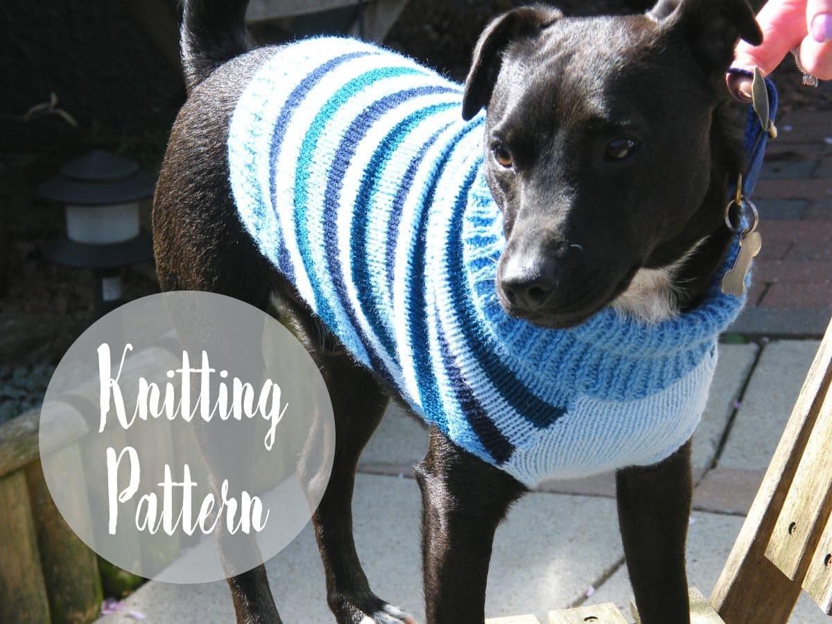Dog Sweater Pattern | Free Knitting Patterns | Handy Little Me