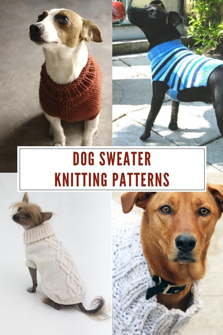 Fall dog sweater knitting patterns