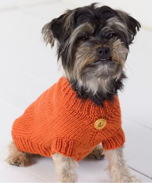 Dog-Sweater_Large
