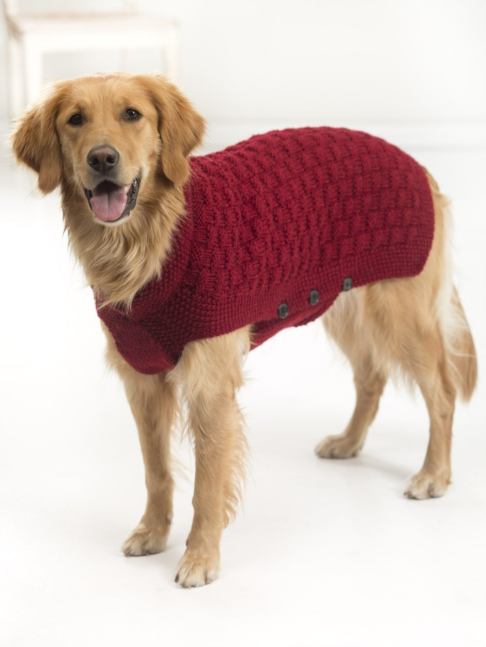 7ca0cefe1a66cc 10 Stunning Examples Of Beautiful Fall Dog Sweaters