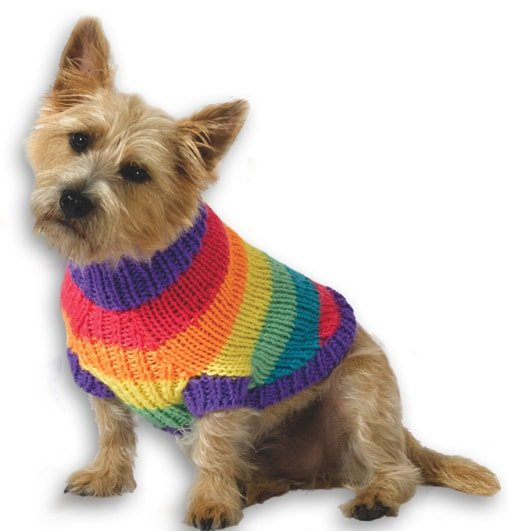 Rainbow knit dog sweater