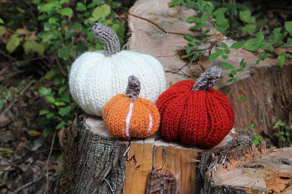 free pumpkin knitting pattern