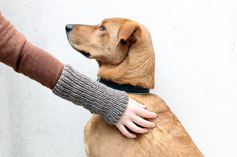 easy knit ribbed fingerless gloves