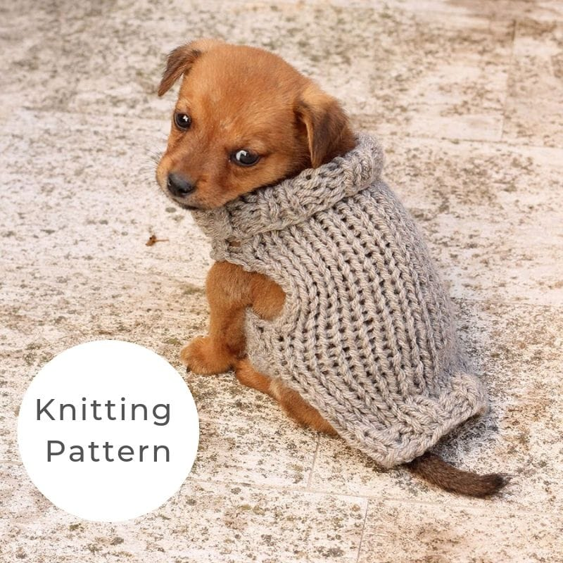 Puppy sweater pattern