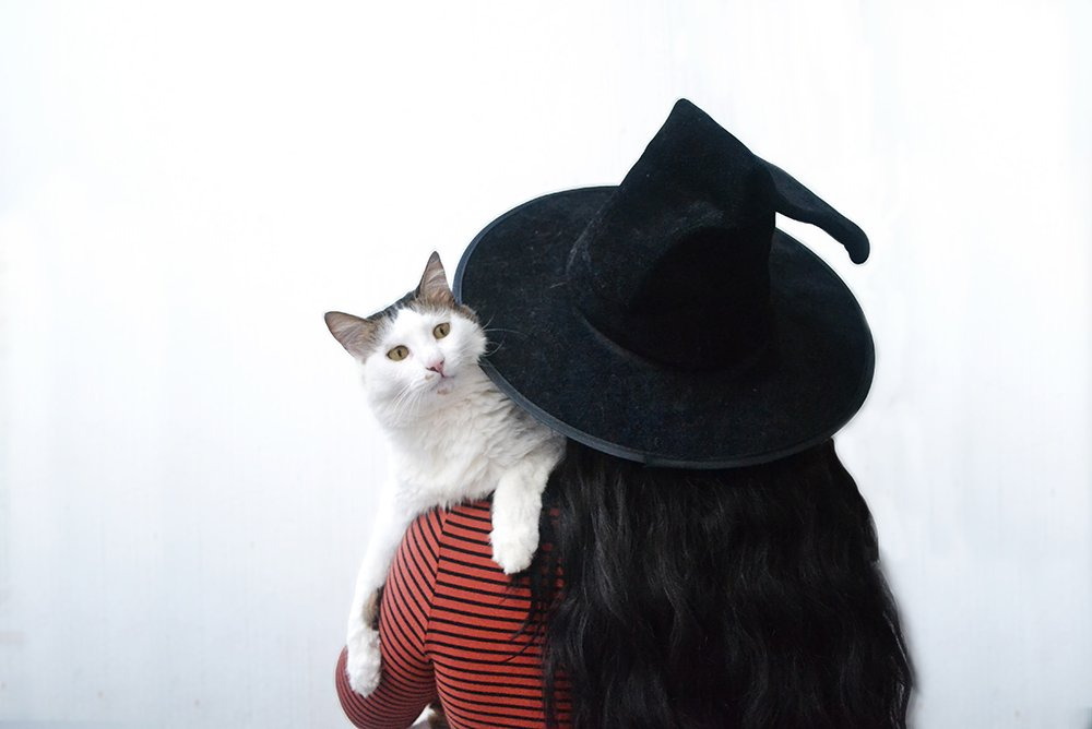 Witches hat and cat