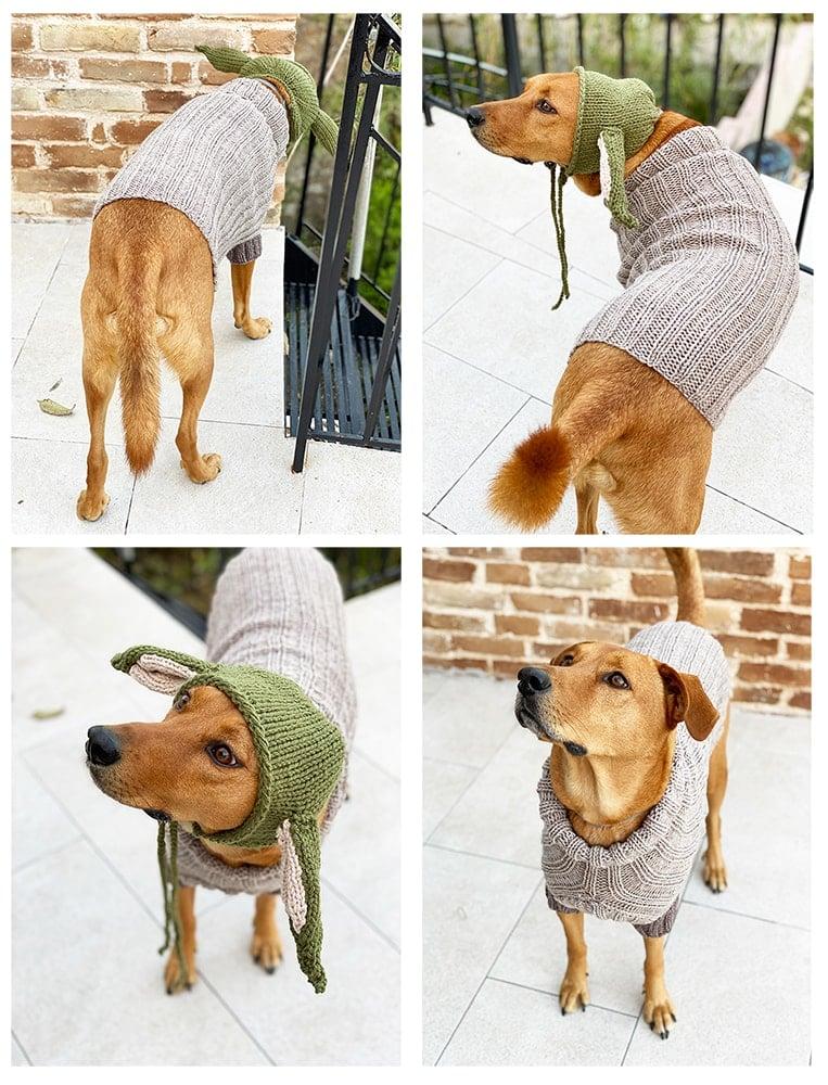baby yoda dog sweater