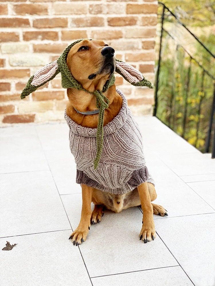 baby-yoda-pattern-dog-sweater