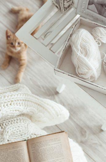 Eco-Friendly Home Decor in 7 Easy Steps