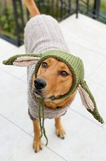 Baby Yoda Pattern | Dog Sweater