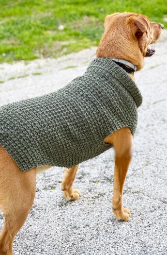 Dog Sweater Knitting Pattern {Straight Needles}