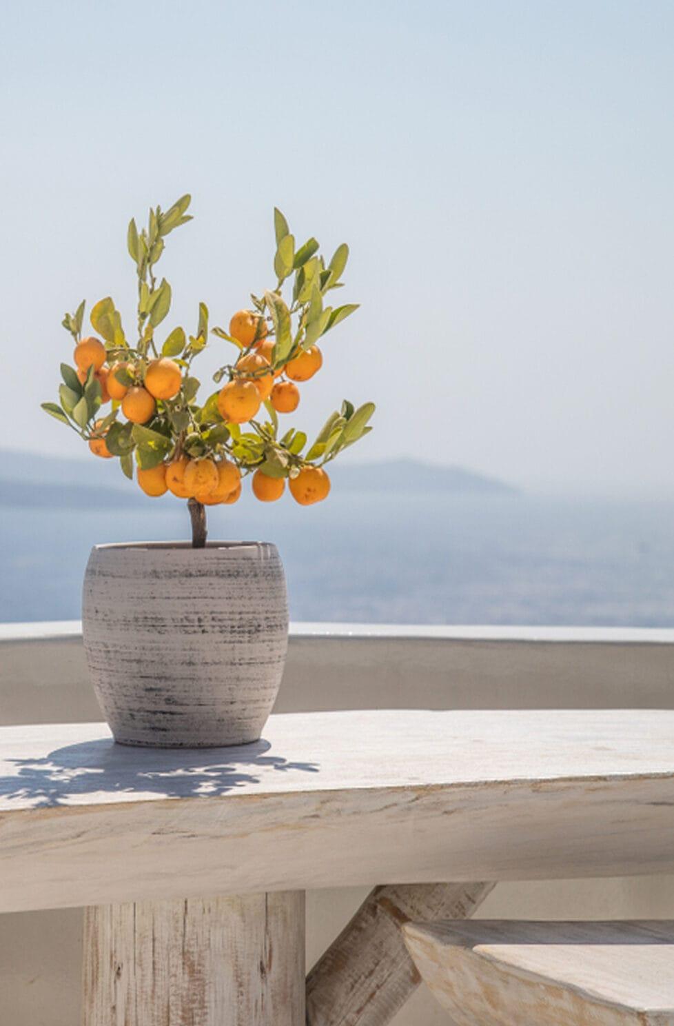 greek outdoor
