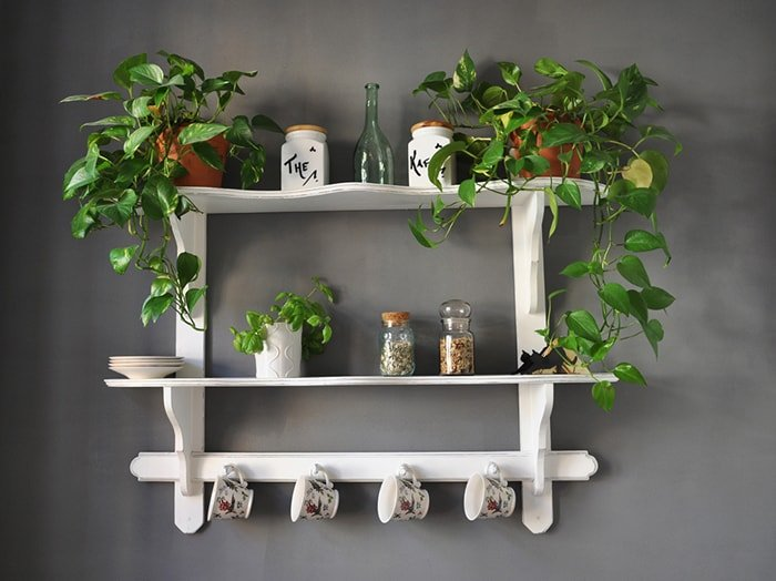 greenery on a painted white shelf