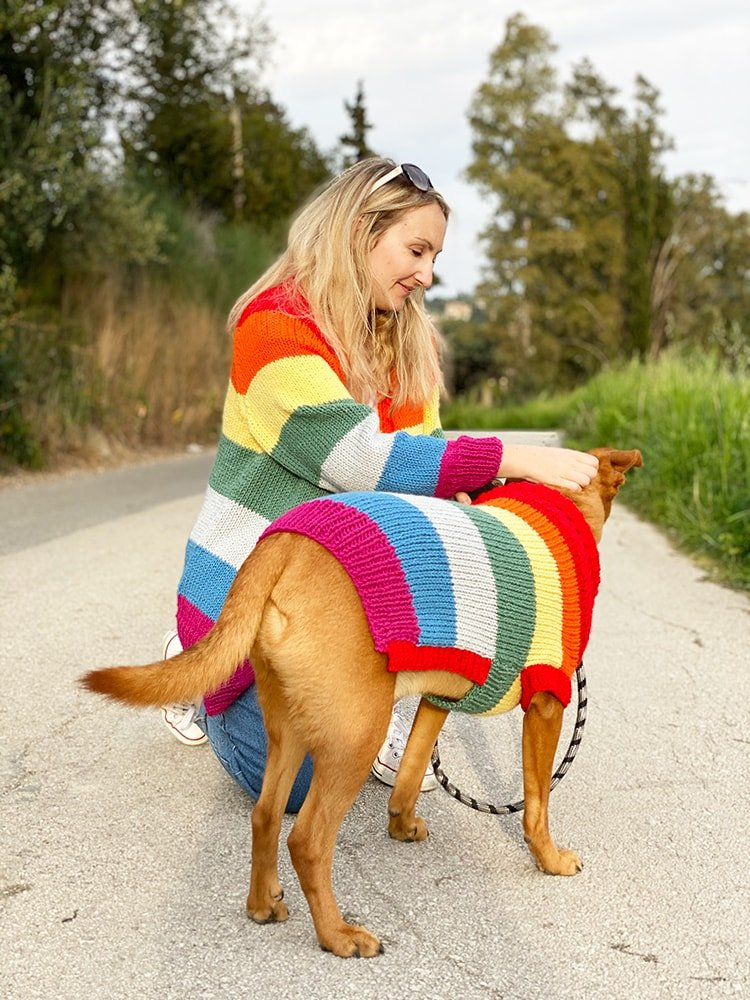 rainbow sweater and matching dog sweater